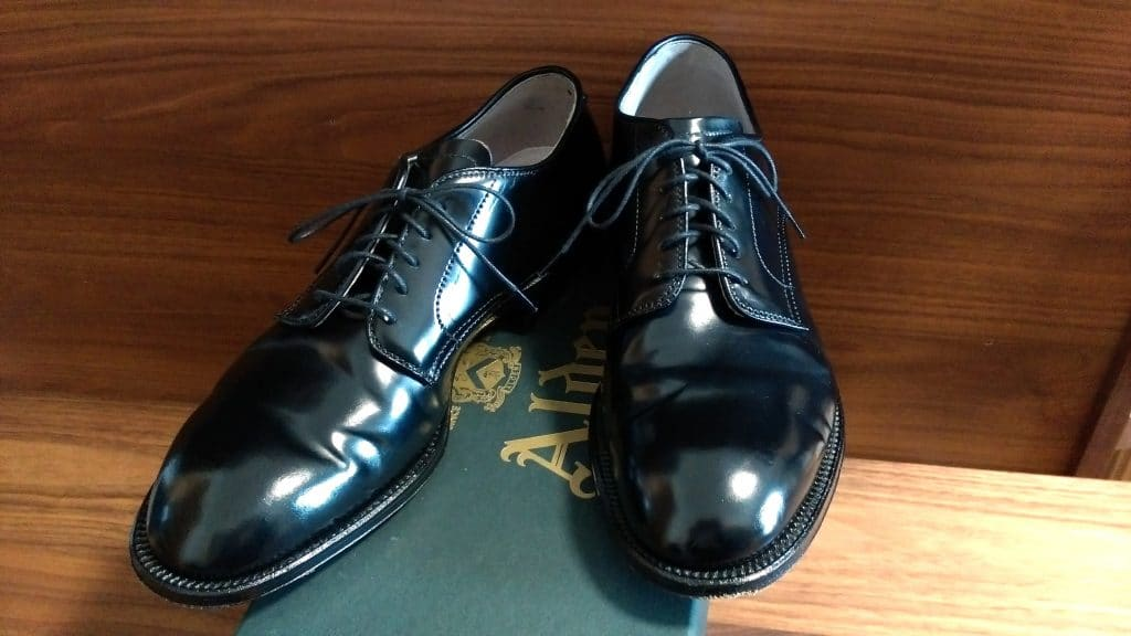 Alden black cordovan Plain Toe Modified last